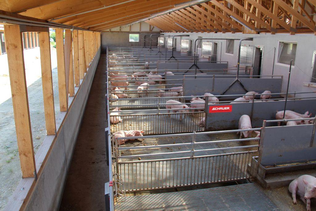 1S2_Güllelose-Schweinestall.jpg