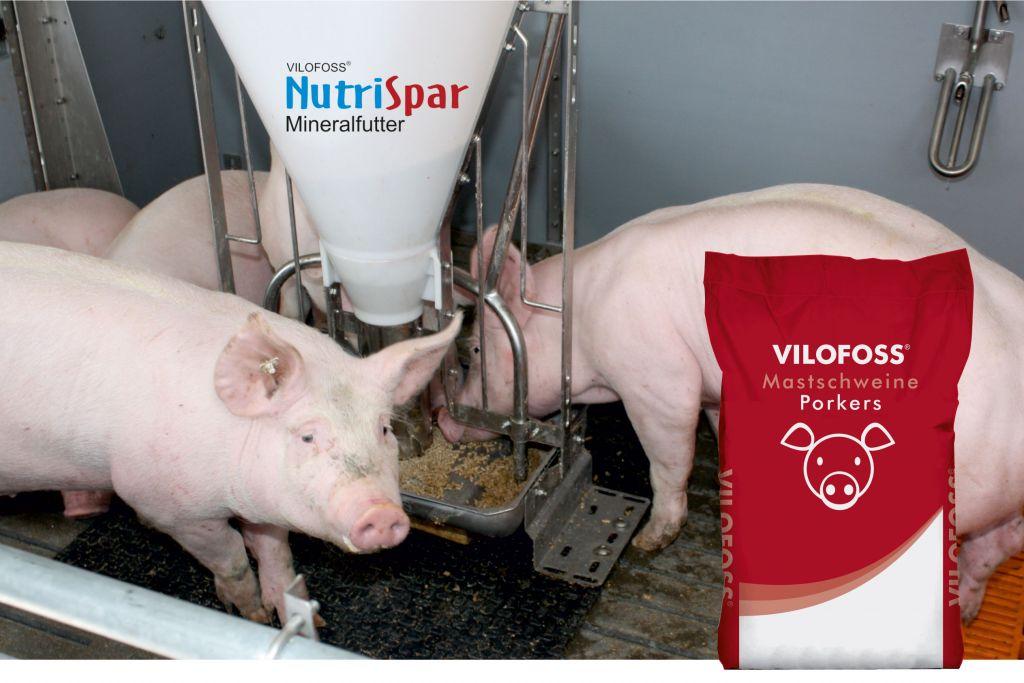 Mineralfutter-Schweine-Saecke-NutriSpar.jpg
